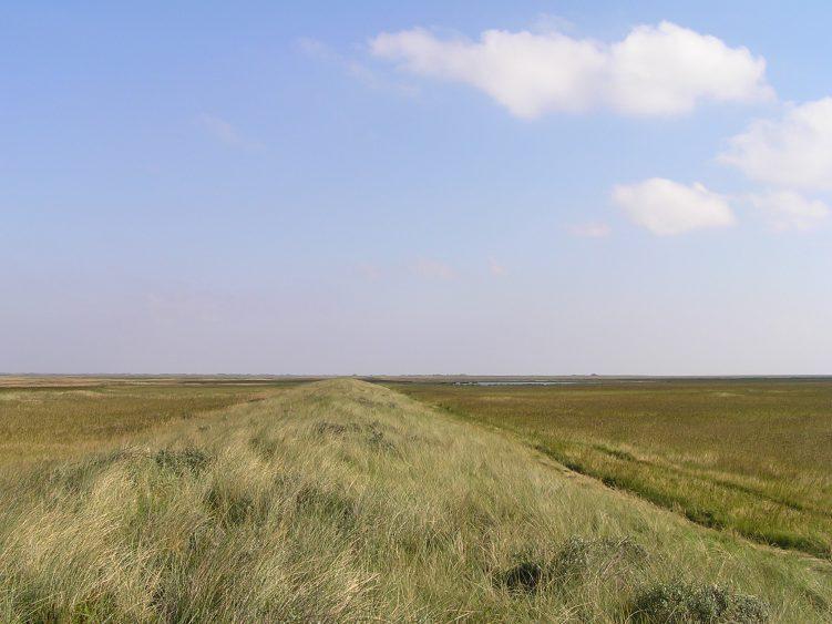 1,5 miljoen voor project 'De Donkerte van het Waddengebied'
