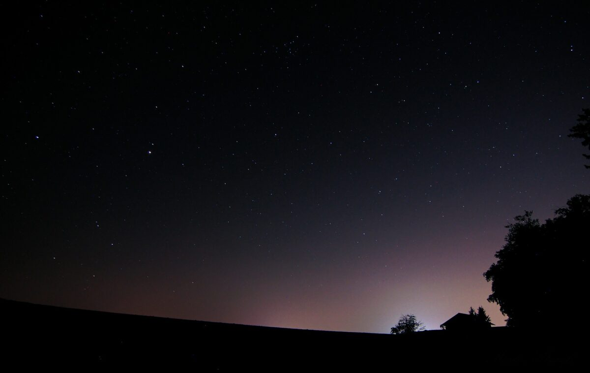 Licht verstoort ritmes van mens en dier