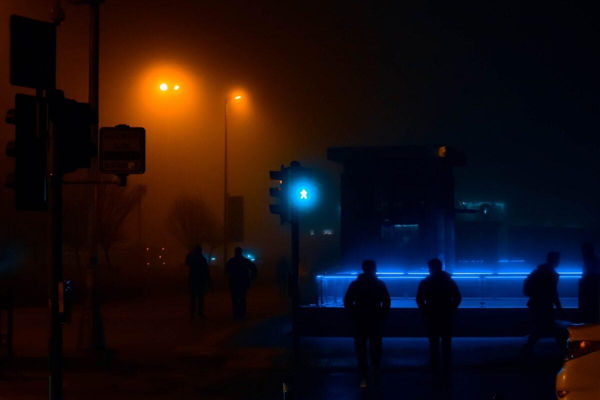 Mag het wat donkerder? Lichtvervuiling schaadt dier én mens